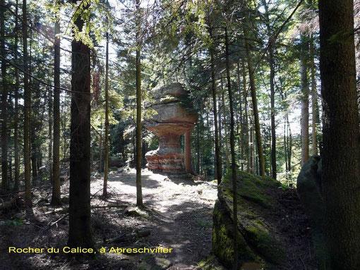 Grand Soldat, forêt, Vosges