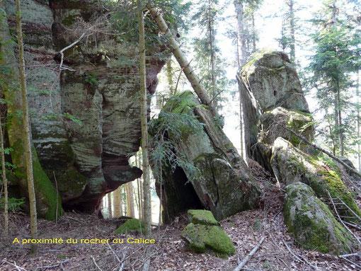 Grand soldat, forêt, Vosges, Abreschviller