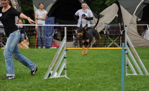 Königsbrunn, 18.09.2010 Jumping 6. Platz von 26 Startern