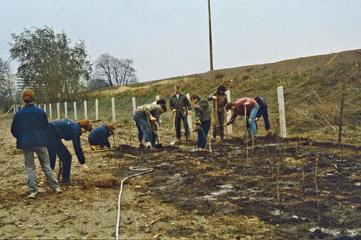 Der Start 1988: Zaunbau und Gehölzanzucht