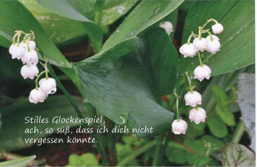Bild und Text: Heike Trefflich