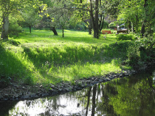 Standortgerechte Vegetation