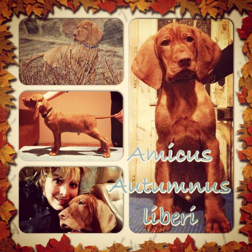 Amicus with his owner :)