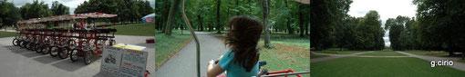 DIJON : Visite du Parc de la Colombière en ROSALIE