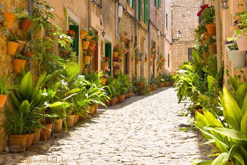 mit Topfpflanzen dekorierten Gassen ist in Valldemossa