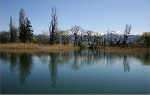 Lac de Saint-André, au pied du Granier