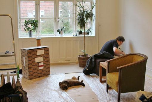 Parquet posé, reste les finitions. Même le chat est éreinté par ces week-ends travaux  !