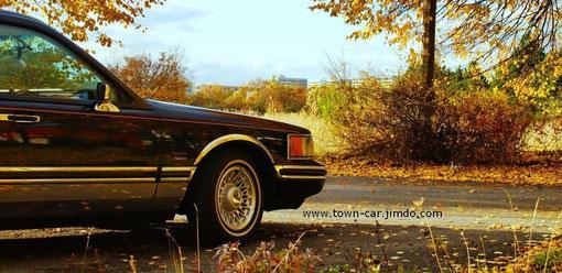 1994 Lincoln Town Car Schwerin Seite