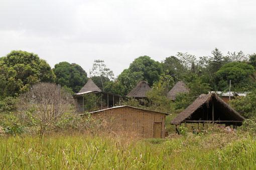 das Dorf liegt mitten im Urwald