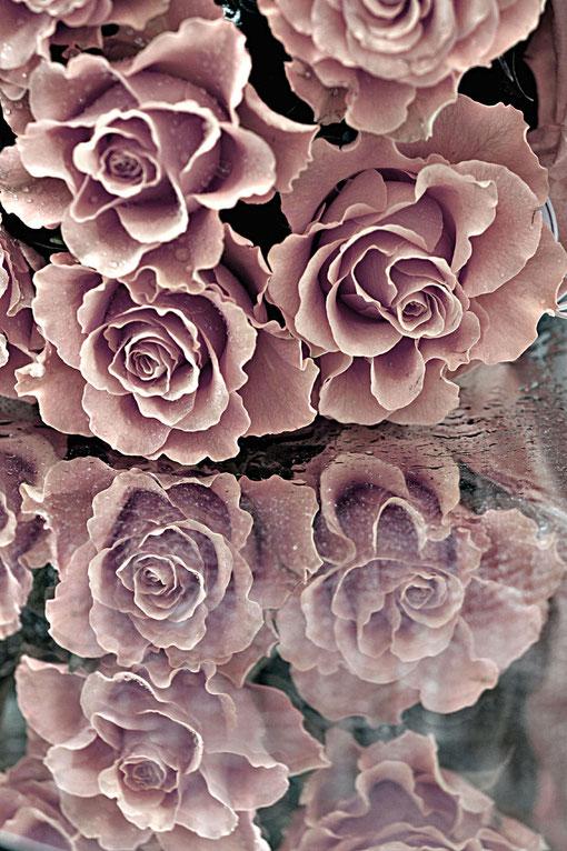 Rosen auf einem Spiegel