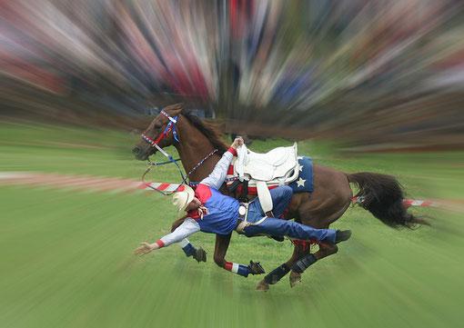 Rodeoshow