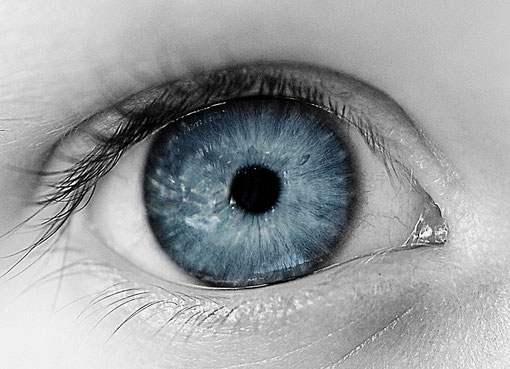 Jan`s Auge