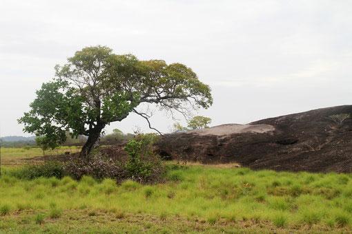 Landschaft an den Schildkrötensteinen