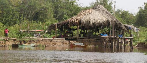 hier leben die Warao Indianer