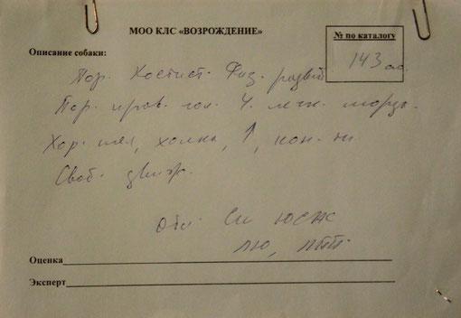 Лучший юниор , Лучший представитель породы ,эксперт  Сипягин (Россия)
