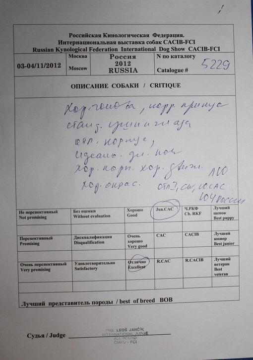 Лучший  юниор , Юный Чемпион России, экспертLeos Jancik(Чехия)