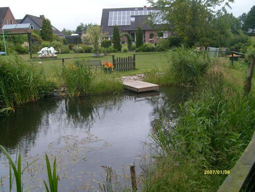 Garten mit Moorteich