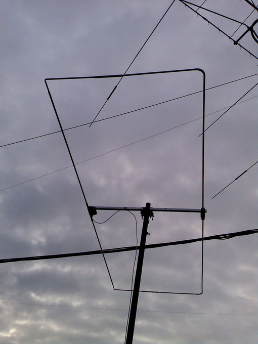 antenna MOXON 50 MHz in prova