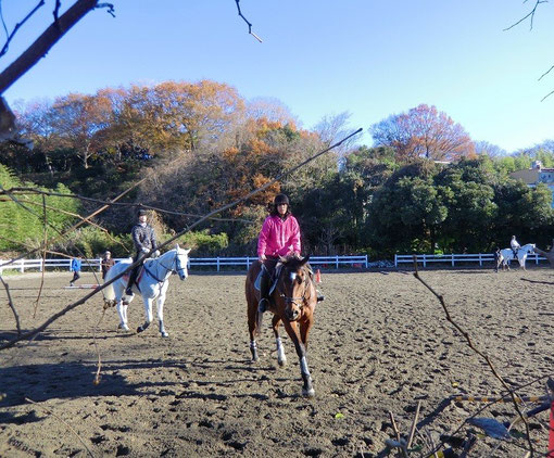 10月28日(2012) 馬術の練習風景(野川の近く:三鷹市) 2011年12月撮影