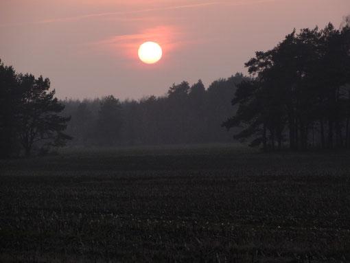 Sonnenuntergang über diesigen Feldern (c) Alte Schule Bokel