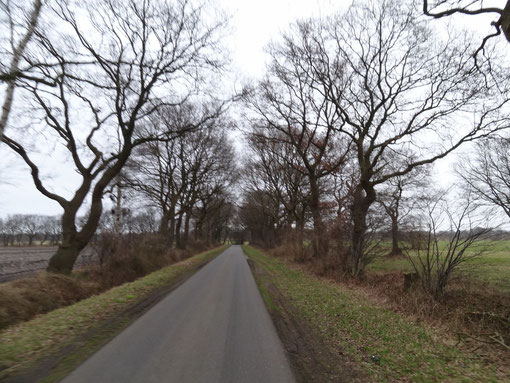 Weg bei Bokel Langenfelde Kranzmoor Heise Oberheise Hollen Hollenerheide Hollenerkamp