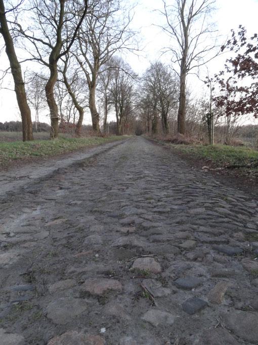 Kopfsteinpflaster der Loher Straße von Bokel Langenfelde Richtung Lohe