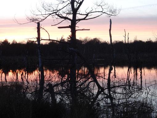 Abendstimmung Großes Moor bei Bokel Langenfelde Kranzmoor Heise Oberheise Hollen Hollenerheide Hollenerkamp