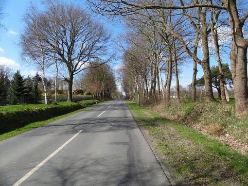 R 20 Rund um den Kahlen Berg Route