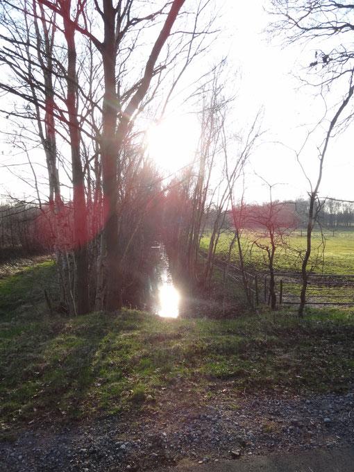 Graben im Moordorf und Straßendorf Oberheise bei Hollen Heise Hollenerkamp Hollener Heide