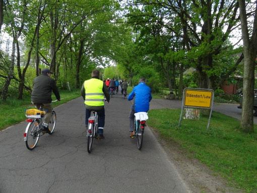 Lüneburger Heide - Oldendorfer Totenstatt (c) Alte Schule Bokel