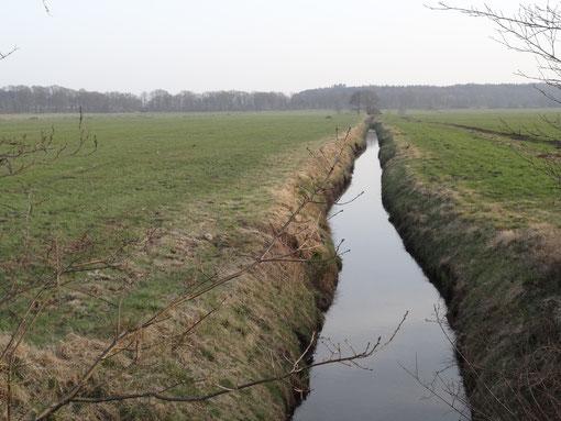 Wiesenentwässerung (c) Alte Schule Bokel