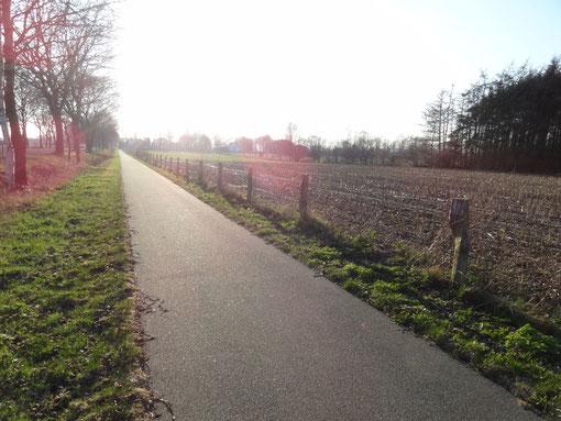 Radweg vom Moordorf und Straßendorf Oberheise bei Hollen Hollenerkamp Hollener Heide zur Windmühle nach Heise
