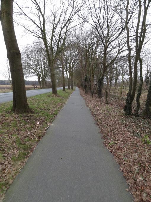 Radweg L134 bei Bokel Langenfelde Kranzmoor Heise Oberheise Hollen Hollenerheide Hollenerkamp