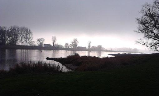 Bei Coswig, Elbe