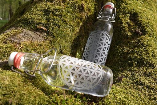 hier gehts zu den neuen Flaschenmodellen...