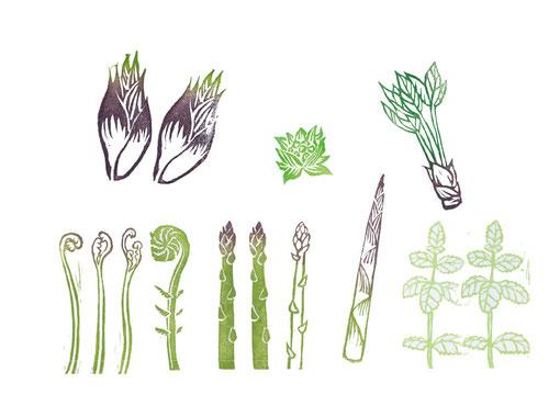 山菜などの消しゴムハンコ