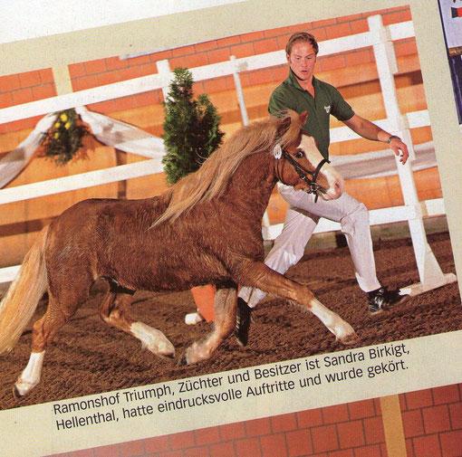 Rheinlands Reiter + Pferde / Dez. 2011