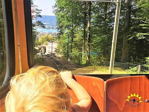 Toller Ausblick auf den Zürichsee bei der Fahrt mit der Dolder Bahn.