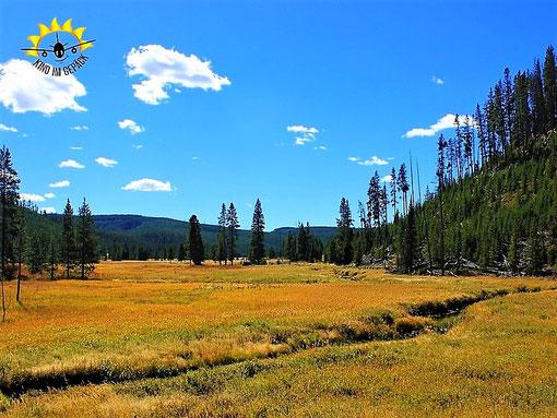 Unendliche Weiten im Yellowstone Nationalpark