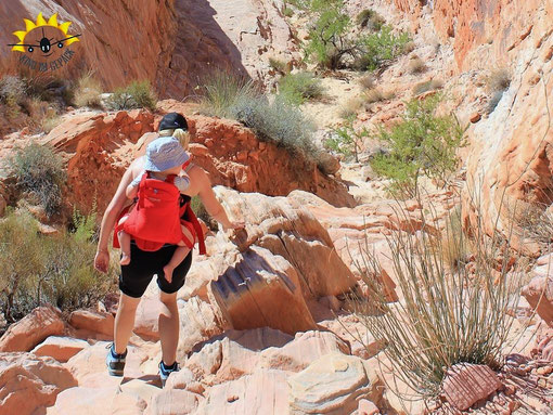 White Domes Wanderweg im Valley of Fire bei Las Vegas.