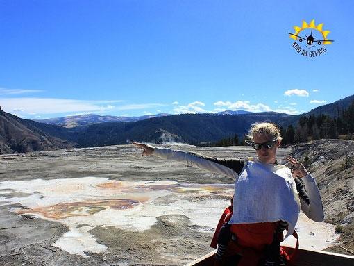 Elternzeit-Reise: mit Baby im Yellowstone NP in den USA.