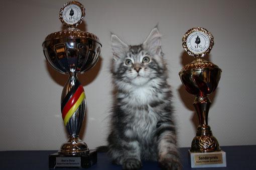 ....................................Hokulanis Baxter mit seinen Pokalen.....................................