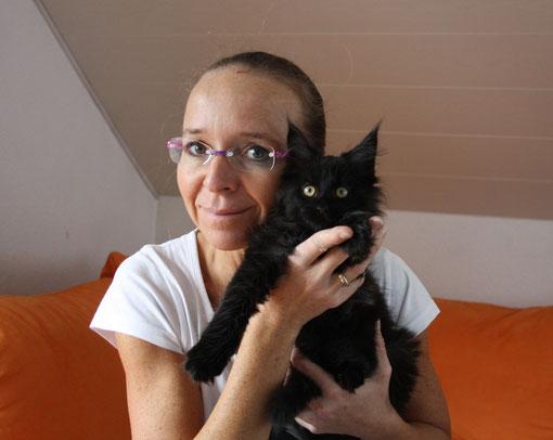 Bruno zieht zu einer katzenlieben Familie und wird dort mit zwei Ragdolls und einem Maine Coon Katerchen viel Spaß haben. Ich vermisse Dich jetzt schon.....