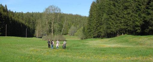 Glasbachtal Mai 2012