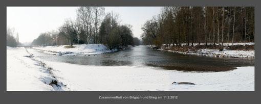 Donau, Brigach, Breg, Quelle, Zusammenfluß, Donaueschingen