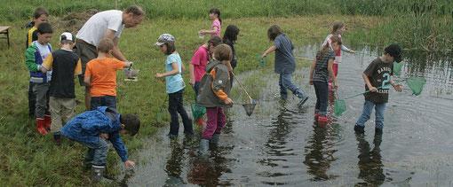 Umweltpädagogik, Naturpädagogik