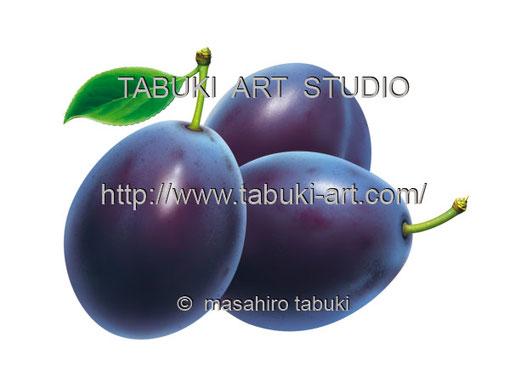 プルーンイラスト くだもの 果物 ストックイラスト 素材イラスト 有料