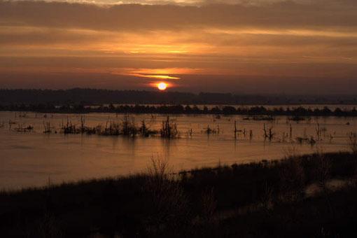 Morgendliche Winterstimmung im Tister Moor bei Sittensen. Auf dem Wasser hat sich eine leichte Eisschicht gebildet. Am ersten Weihnachtstag 2007 halten sich hier noch etwa 2000 Kraniche auf, obwohl seit 14 Tagen leichter Frost herrscht.