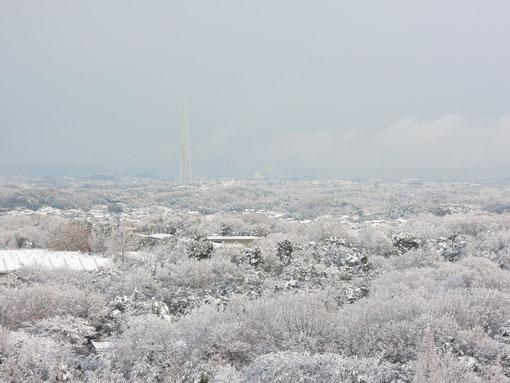 一面の雪景色です。瀬戸市にある電波塔が見られますね。その向こうには雪に埋まったギフチョウの蛹が春を待っています。 COOLPIX P300