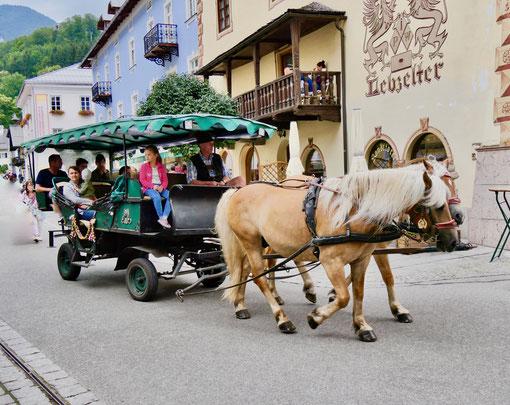 Kutsche am Wolfgangsee  Wolfgangsee Salzkammergut Österreich